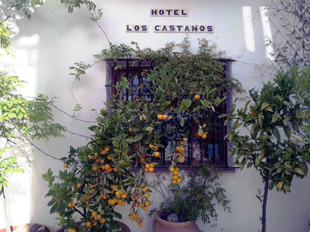 Los Castanos - An Eco Boutique hotel in the Serrania de Ronda