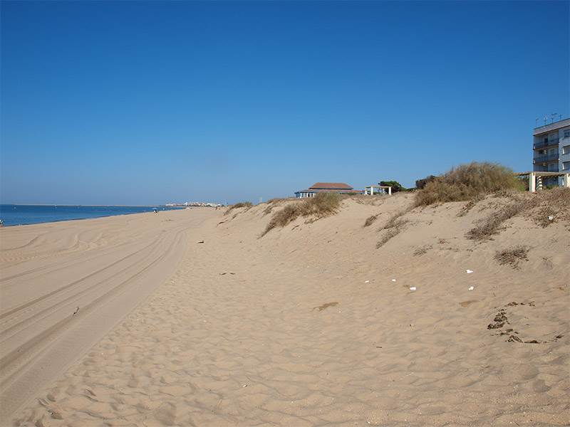 Costa de la Luz | Guide to the beaches from Isla Canela to Matalascanas