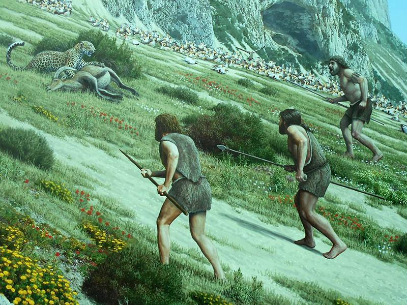 Neanderthals hunting on Gibraltar
