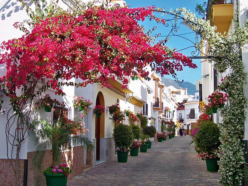 Estepona, Town of Flowers